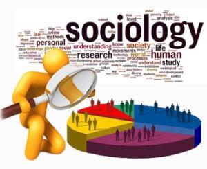 Заказать курсовую работу по социологии
